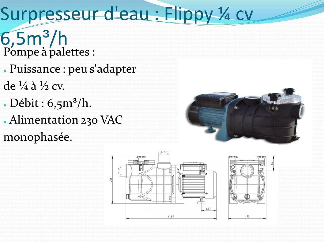 Surpresseur d eau : Flippy ¼ cv 6,5m ³ /h Pompe à palettes : Puissance : peu s adapter de ¼ à ½ cv.
