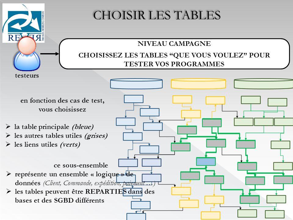 en fonction des cas de test, vous choisissez la table principale (bleue) les autres tables utiles (grises) les liens utiles (verts) ce sous-ensemble représente un ensemble « logique » de données (Client, Commande, expédition, paiement …) les tables peuvent être REPARTIES dans des bases et des SGBD différents CHOISIR LES TABLES NIVEAU CAMPAGNE CHOISISSEZ LES TABLES QUE VOUS VOULEZ POUR TESTER VOS PROGRAMMES testeurs