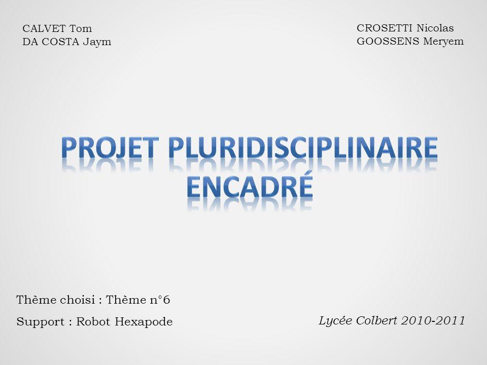 CALVET Tom DA COSTA Jaym CROSETTI Nicolas GOOSSENS Meryem Thème choisi : Thème n°6 Support : Robot Hexapode Lycée Colbert 2010-2011
