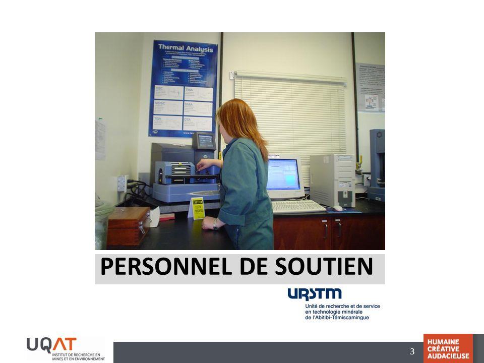 4 Secrétariat de lIRME Aide à ladjointe Karen Boileau-Légaré (en congé de maternité) Sylvie Tanguay (par intérim)