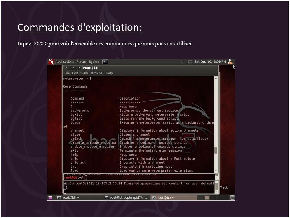 Commandes d'exploitation: Tapez > pour voir l'ensemble des commandes que nous pouvons utiliser.