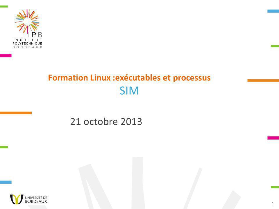1 Formation Linux :exécutables et processus SIM 21 octobre 2013