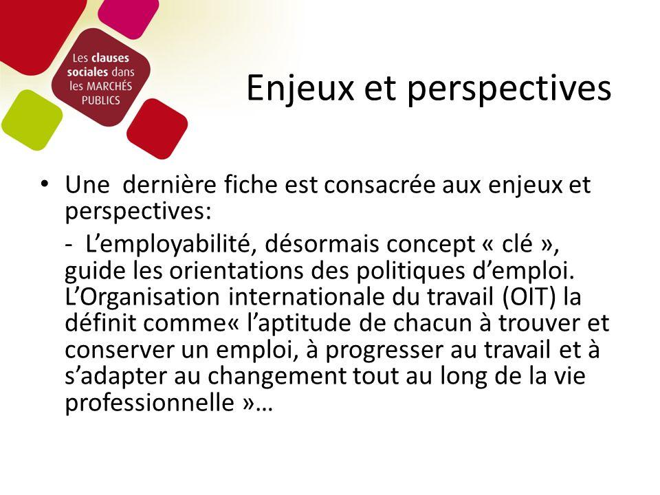 Enjeux et perspectives Une dernière fiche est consacrée aux enjeux et perspectives: - Lemployabilité, désormais concept « clé », guide les orientations des politiques demploi.