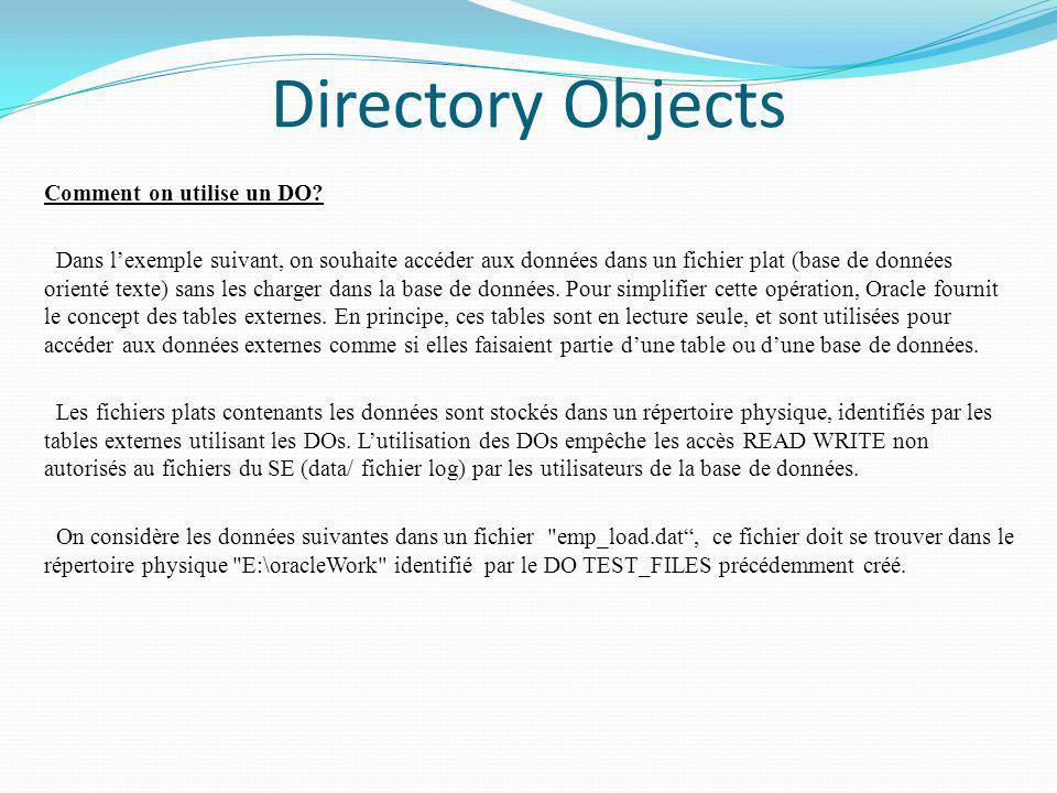 Directory Objects Comment on utilise un DO? Dans lexemple suivant, on souhaite accéder aux données dans un fichier plat (base de données orienté texte