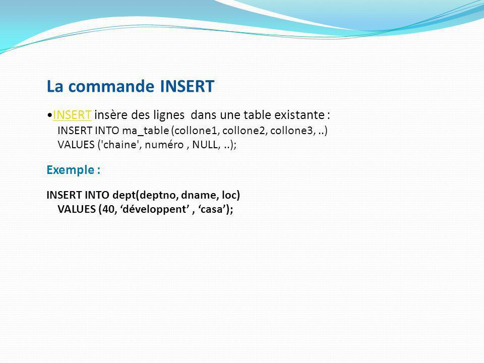 Directory Objects Comment on utilise un DO.