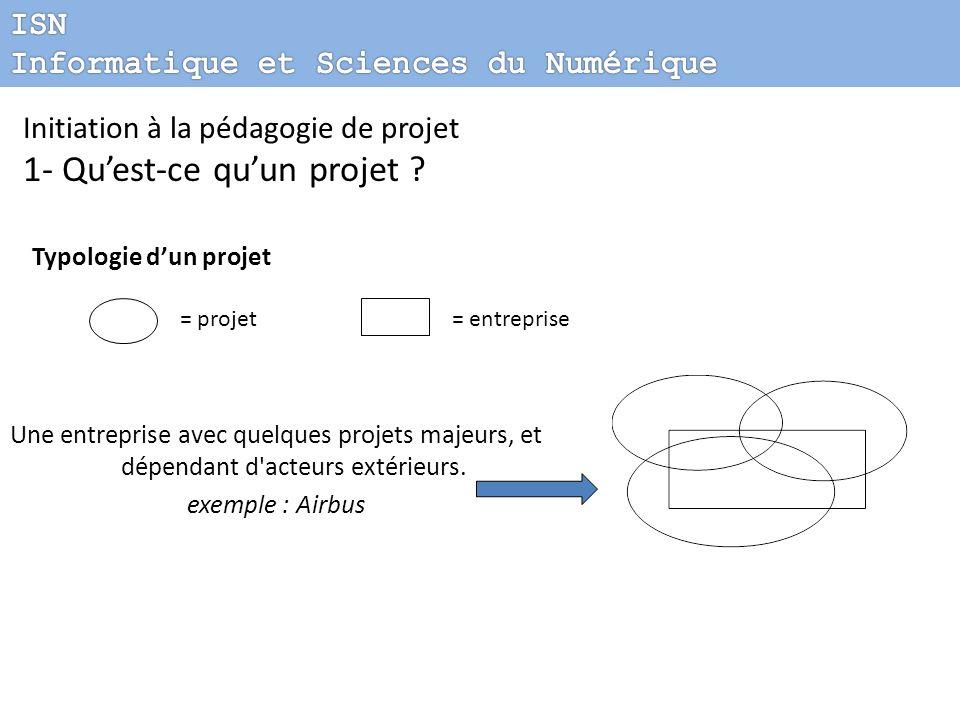 Une entreprise avec quelques projets majeurs, et dépendant d'acteurs extérieurs. exemple : Airbus = projet= entreprise Initiation à la pédagogie de pr