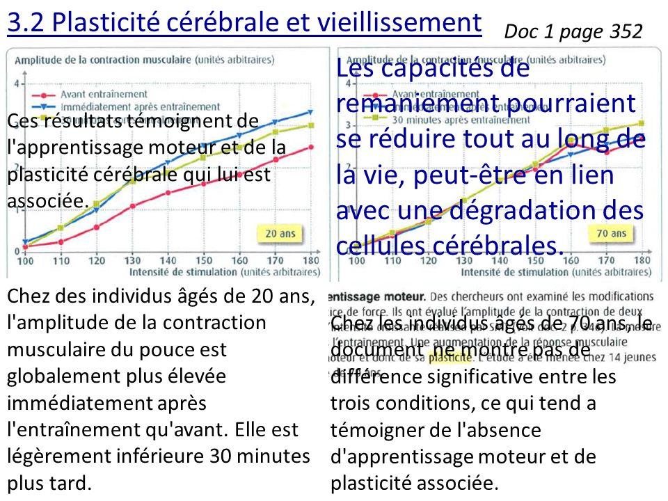 3.2 Plasticité cérébrale et vieillissement Doc 1 page 352 Chez des individus âgés de 20 ans, l amplitude de la contraction musculaire du pouce est globalement plus élevée immédiatement après l entraînement qu avant.