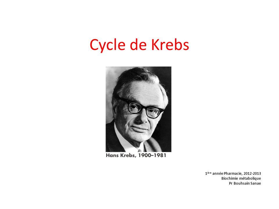 Cycle de Krebs 1 ière année Pharmacie, 2012-2013 Biochimie métabolique Pr Bouhsain Sanae