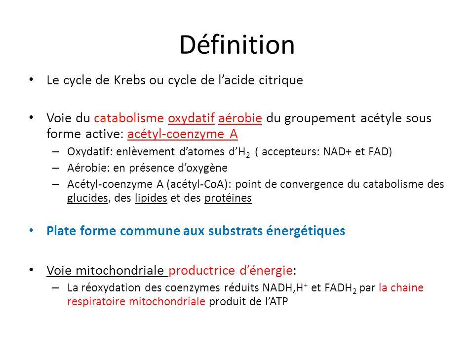 Définition Le cycle de Krebs ou cycle de lacide citrique Voie du catabolisme oxydatif aérobie du groupement acétyle sous forme active: acétyl-coenzyme A – Oxydatif: enlèvement datomes dH 2 ( accepteurs: NAD+ et FAD) – Aérobie: en présence doxygène – Acétyl-coenzyme A (acétyl-CoA): point de convergence du catabolisme des glucides, des lipides et des protéines Plate forme commune aux substrats énergétiques Voie mitochondriale productrice dénergie: – La réoxydation des coenzymes réduits NADH,H + et FADH 2 par la chaine respiratoire mitochondriale produit de lATP