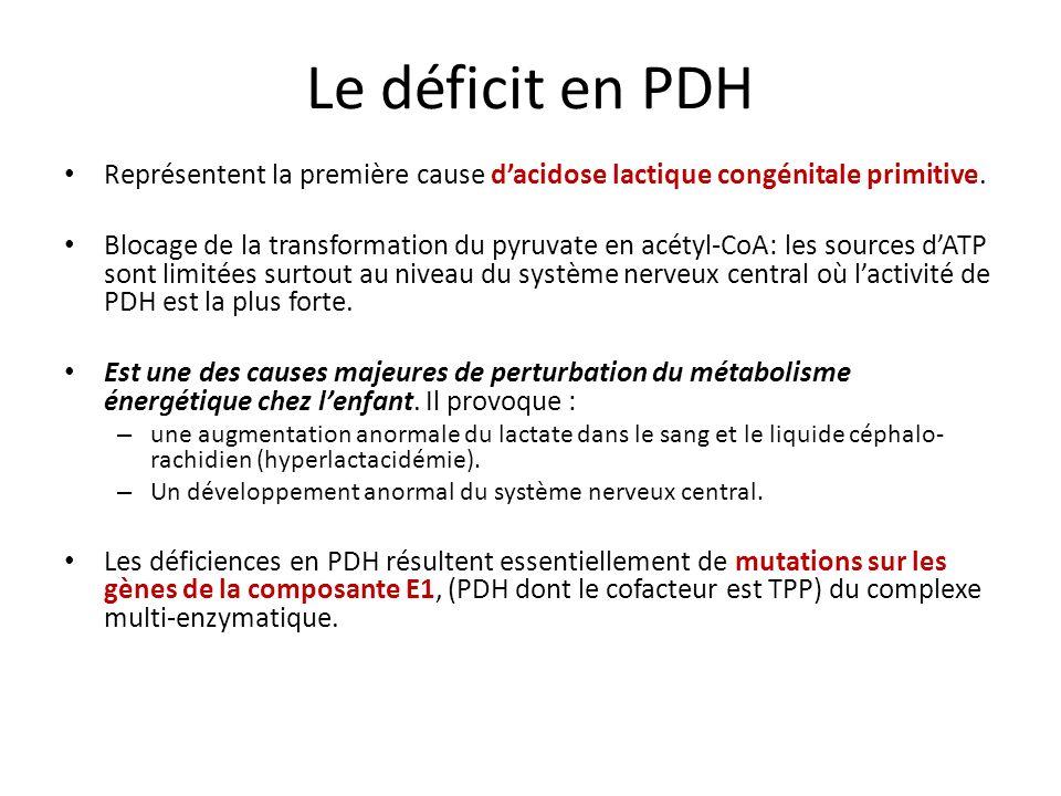 Le déficit en PDH Représentent la première cause dacidose lactique congénitale primitive.