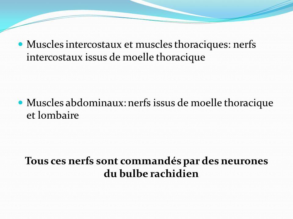 ex de Pathologies respiratoires ASTHME : DE TYPE RESTRICTIVE BPCO : DE TYPE OBSTRUCTIVE Infectieuse Anémie etc.