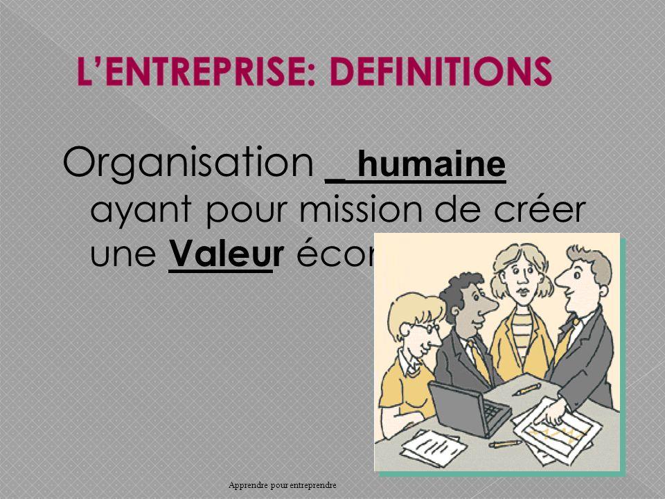 Organisation _ humaine ayant pour mission de créer une Valeur économique.