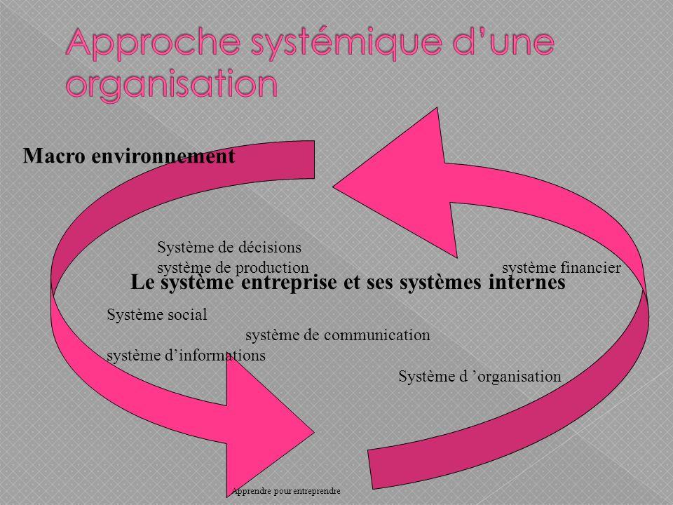 Le système entreprise et ses systèmes internes Système social système de communication système dinformations Système de décisions système de production système financier Système d organisation Macro environnement Apprendre pour entreprendre