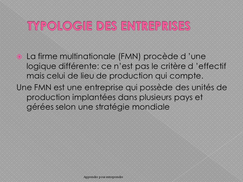 La firme multinationale (FMN) procède d une logique différente: ce nest pas le critère d effectif mais celui de lieu de production qui compte.