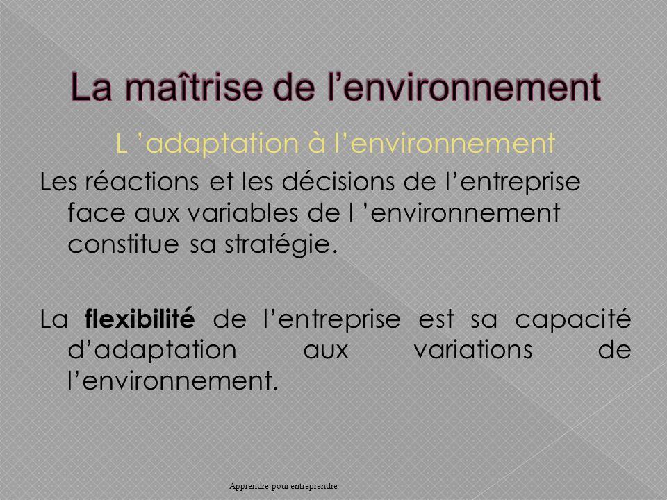 L adaptation à lenvironnement Les réactions et les décisions de lentreprise face aux variables de l environnement constitue sa stratégie.