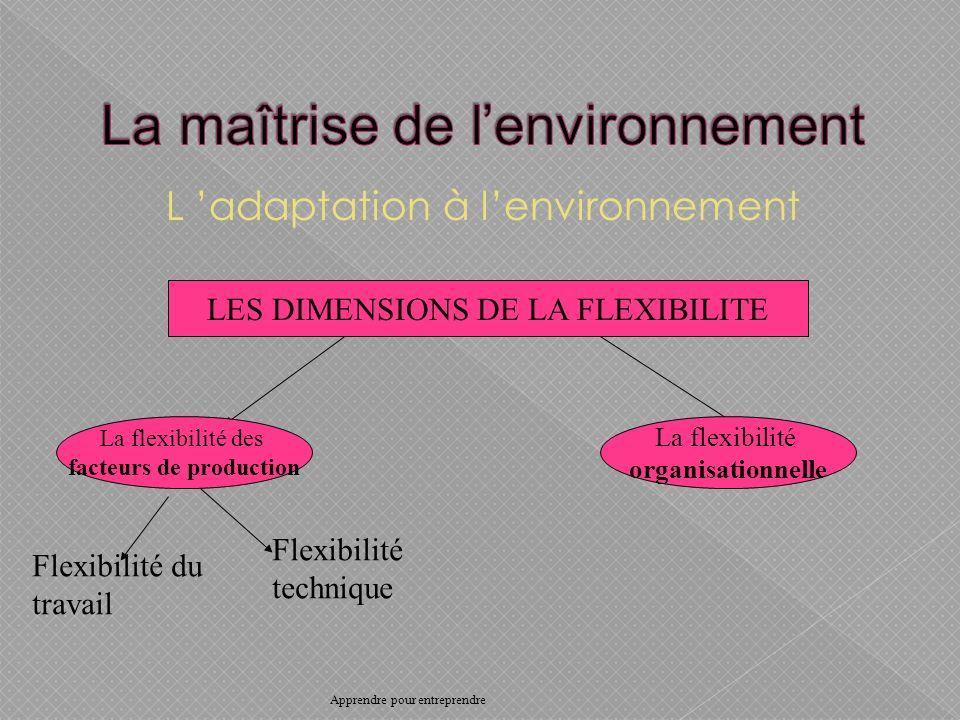 L adaptation à lenvironnement LES DIMENSIONS DE LA FLEXIBILITE La flexibilité des facteurs de production La flexibilité organisationnelle Flexibilité du travail Flexibilité technique Apprendre pour entreprendre