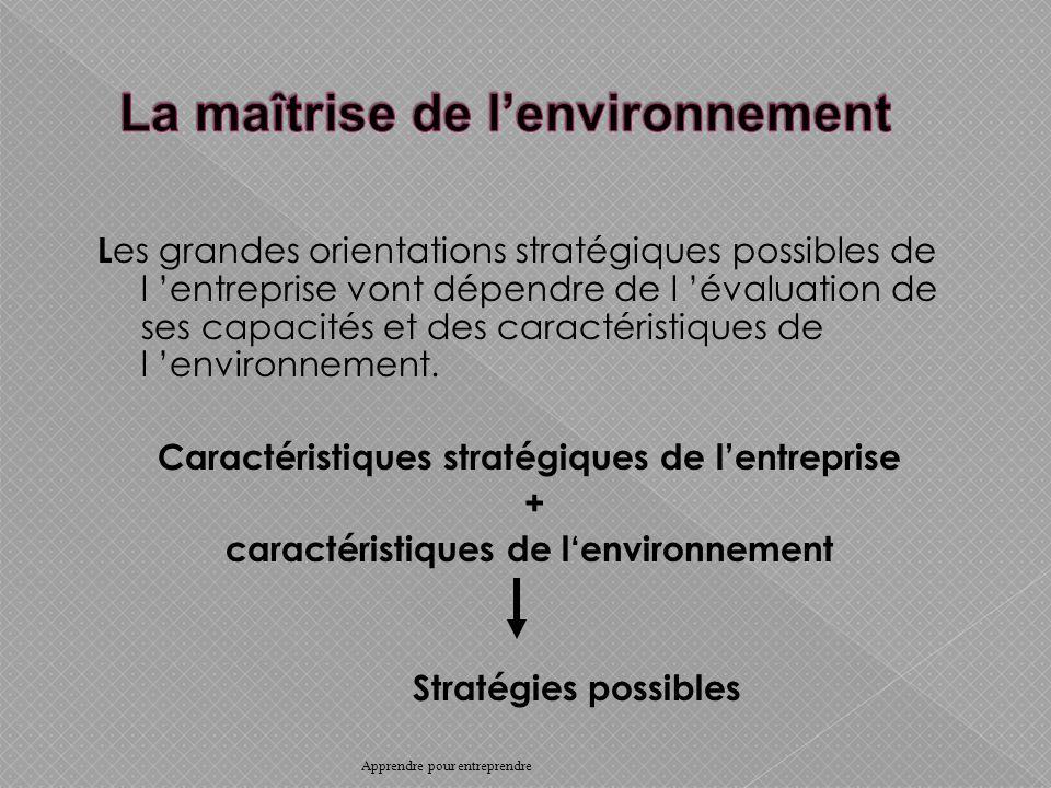 L es grandes orientations stratégiques possibles de l entreprise vont dépendre de l évaluation de ses capacités et des caractéristiques de l environnement.