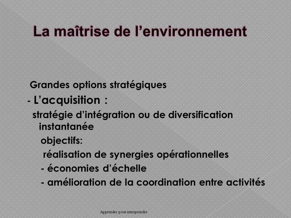 Grandes options stratégiques - Lacquisition : stratégie dintégration ou de diversification instantanée objectifs: réalisation de synergies opérationnelles - économies déchelle - amélioration de la coordination entre activités Apprendre pour entreprendre
