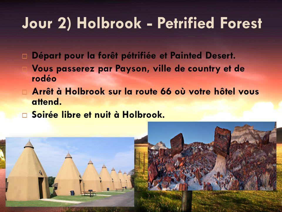 Jour 2) Holbrook - Petrified Forest Départ pour la forêt pétrifiée et Painted Desert. Vous passerez par Payson, ville de country et de rodéo Arrêt à H