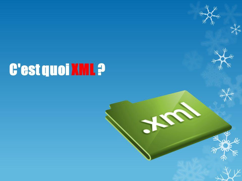C'est quoi XML ?