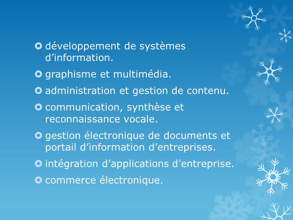 développement de systèmes dinformation. graphisme et multimédia. administration et gestion de contenu. communication, synthèse et reconnaissance vocal