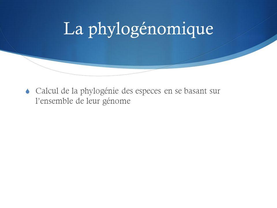 La phylogénomique Calcul de la phylogénie des especes en se basant sur lensemble de leur génome
