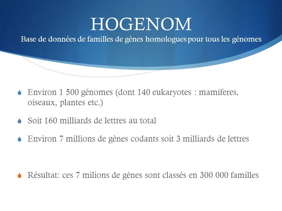 HOGENOM Base de données de familles de gènes homologues pour tous les génomes Environ 1 500 génomes (dont 140 eukaryotes : mamiferes, oiseaux, plantes