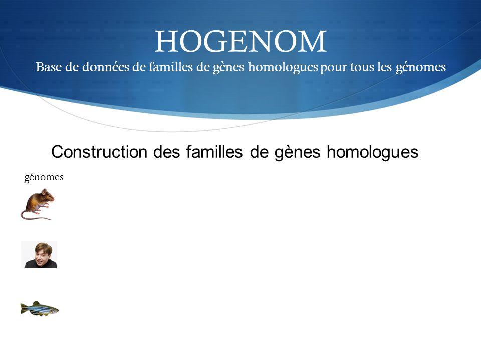 HOGENOM Base de données de familles de gènes homologues pour tous les génomes génomes Construction des familles de gènes homologues