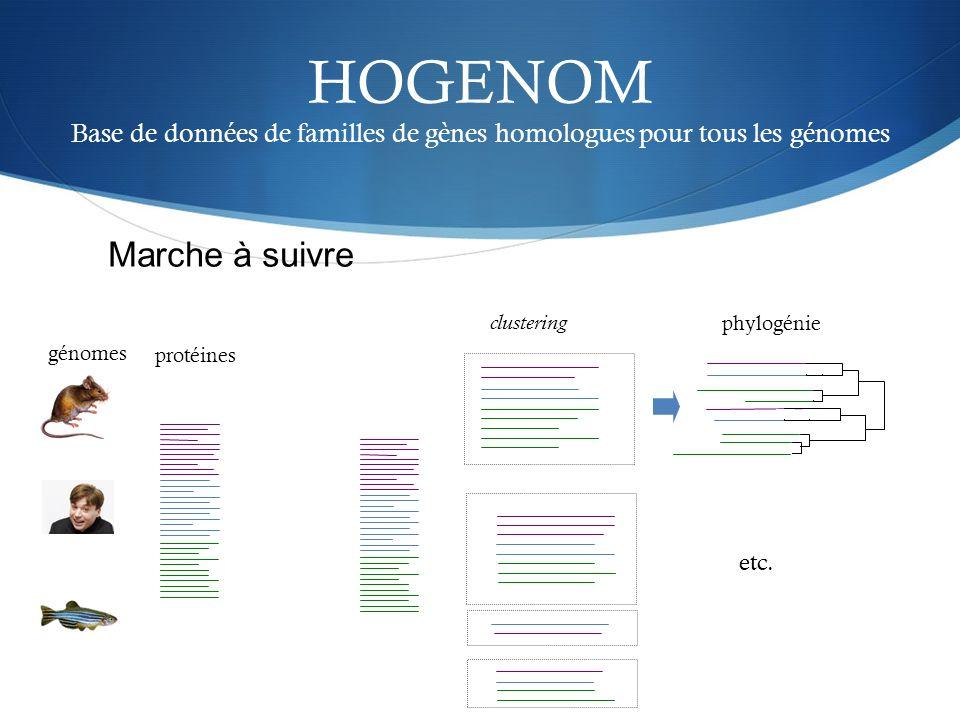 HOGENOM Base de données de familles de gènes homologues pour tous les génomes clustering phylogénie etc. génomes protéines Marche à suivre