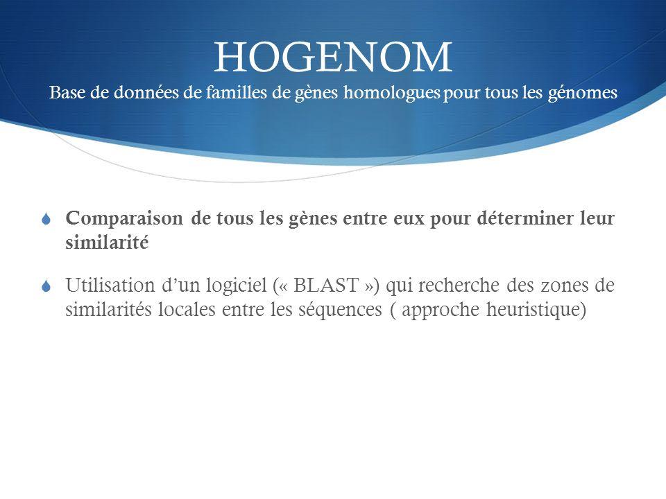 HOGENOM Base de données de familles de gènes homologues pour tous les génomes Comparaison de tous les gènes entre eux pour déterminer leur similarité
