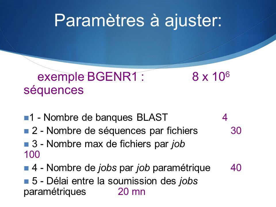 exemple BGENR1 : 8 x 10 6 séquences 1 - Nombre de banques BLAST 4 2 - Nombre de séquences par fichiers30 3 - Nombre max de fichiers par job 100 4 - No