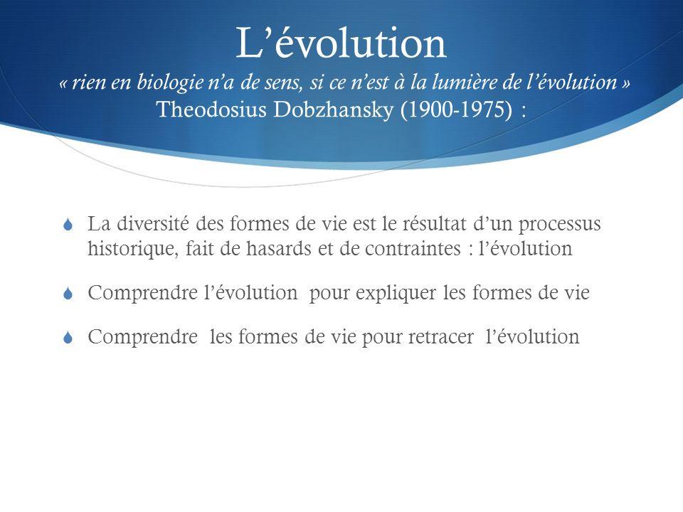 Lévolution « rien en biologie na de sens, si ce nest à la lumière de lévolution » Theodosius Dobzhansky (1900-1975) : La diversité des formes de vie e