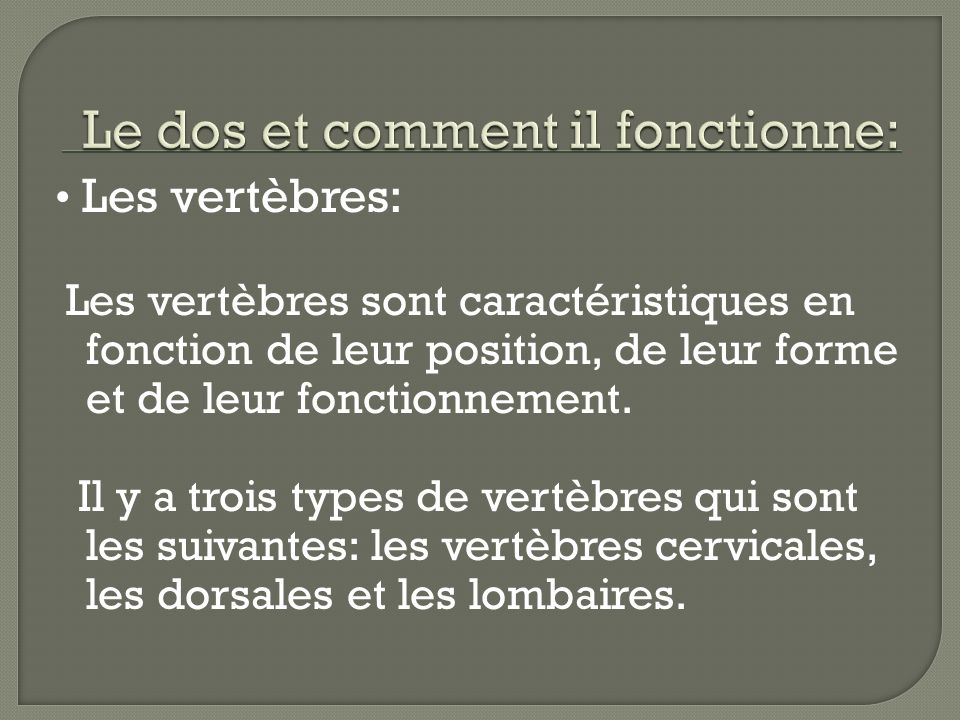 Les vertèbres: Les vertèbres sont caractéristiques en fonction de leur position, de leur forme et de leur fonctionnement. Il y a trois types de vertèb