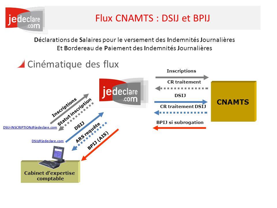19 Flux CNAMTS : DSIJ et BPIJ Cinématique des flux Cabinet dexpertise comptable CNAMTS DSIJ BPIJ si subrogation DSIJ BPIJ (AIS) ARS requête CR traitem