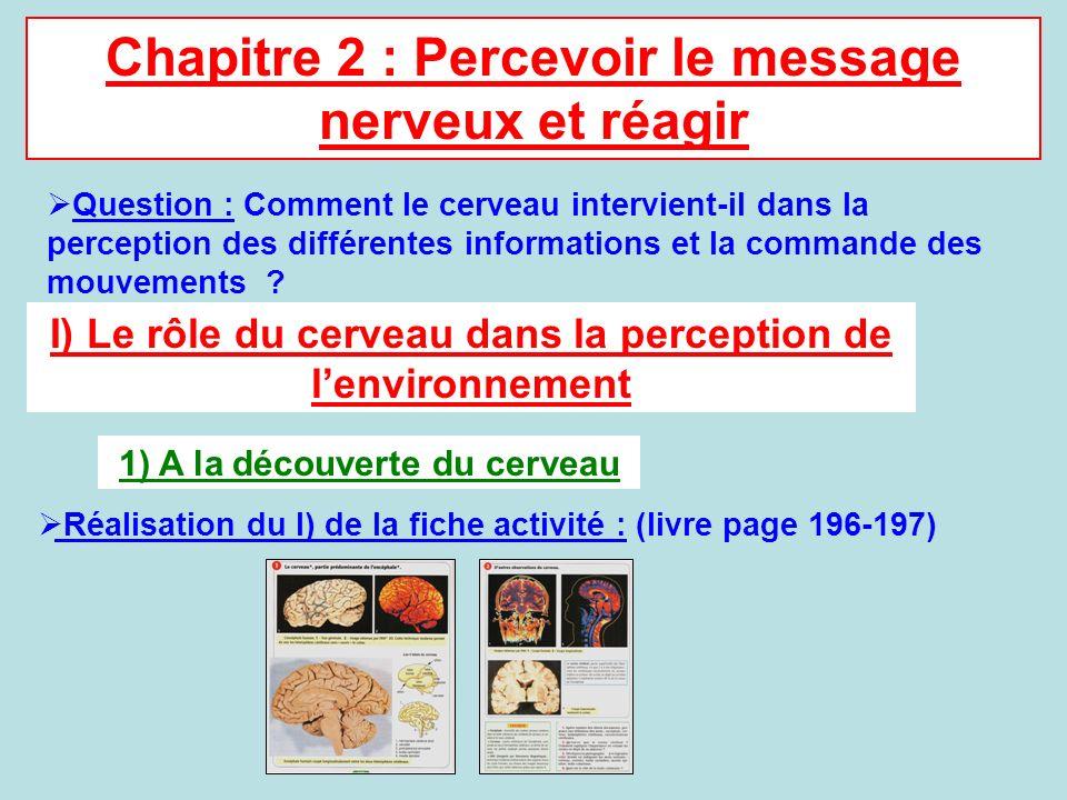Chapitre 2 : Percevoir le message nerveux et réagir Question : Comment le cerveau intervient-il dans la perception des différentes informations et la