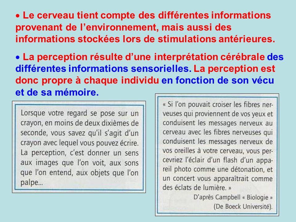 Le cerveau tient compte des différentes informations provenant de lenvironnement, mais aussi des informations stockées lors de stimulations antérieure