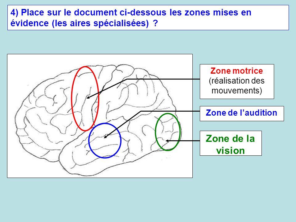 4) Place sur le document ci-dessous les zones mises en évidence (les aires spécialisées) ? Zone de la vision Zone de laudition Zone motrice (réalisati