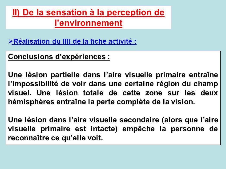 II) De la sensation à la perception de lenvironnement Réalisation du III) de la fiche activité : Conclusions dexpériences : Une lésion partielle dans