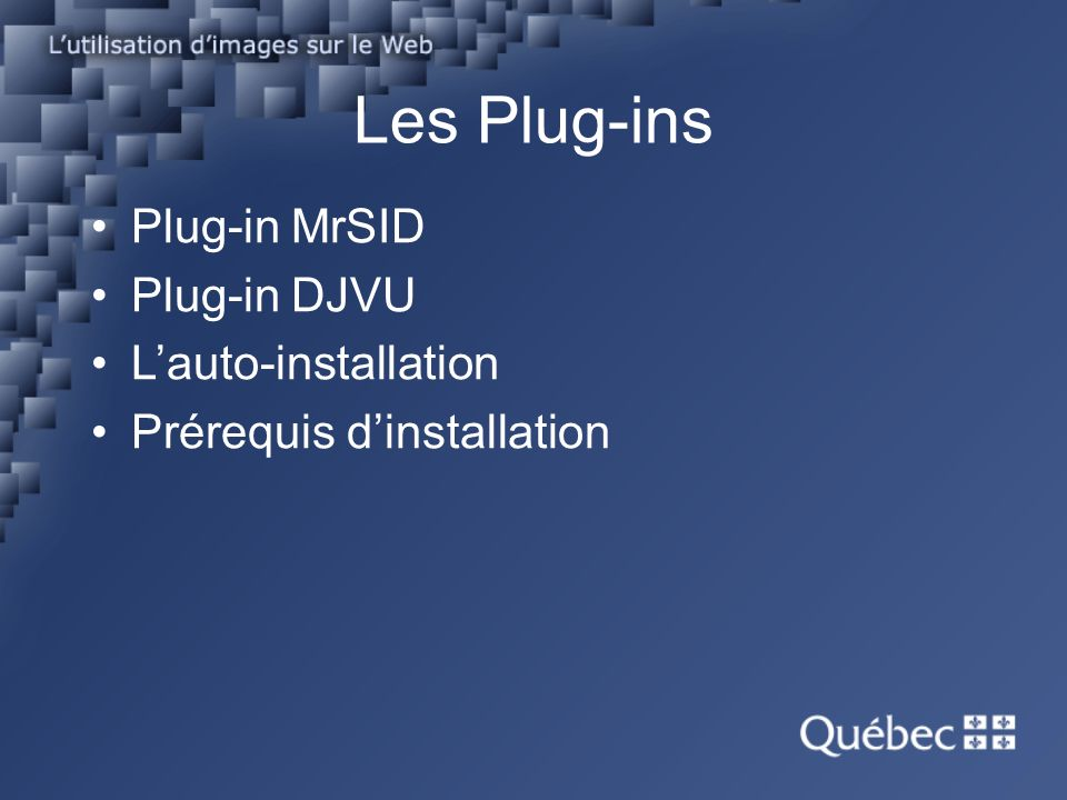Les Plug-ins Plug-in MrSID Plug-in DJVU Lauto-installation Prérequis dinstallation
