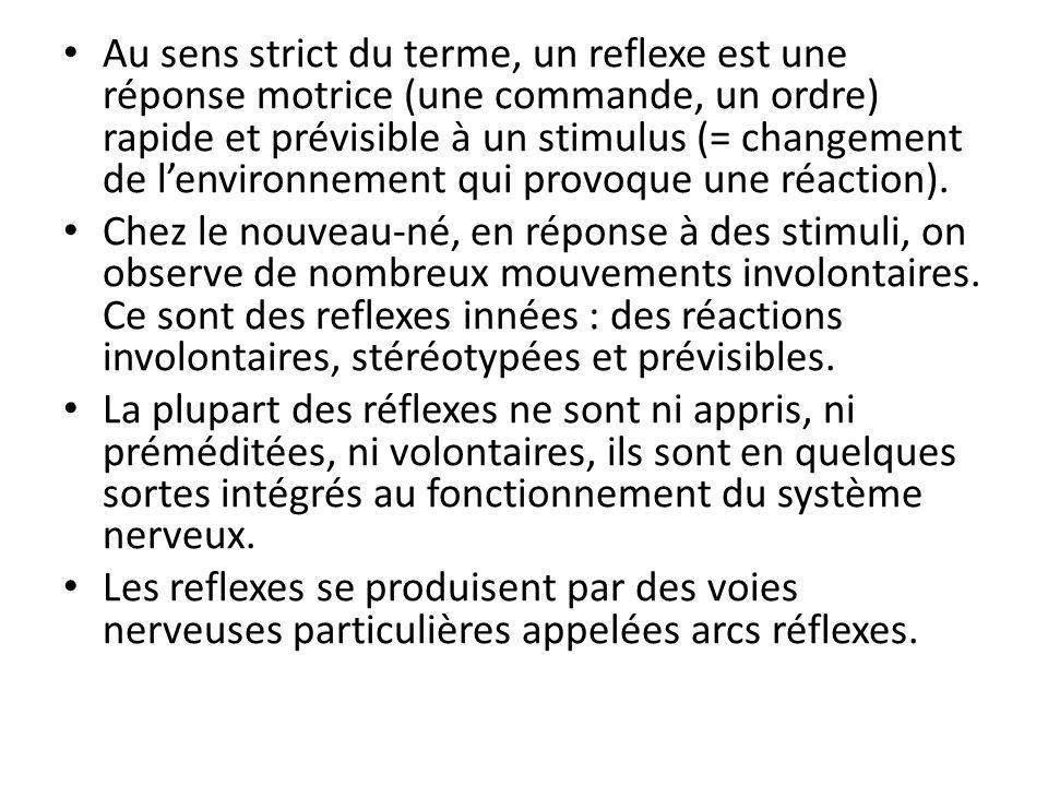 Au sens strict du terme, un reflexe est une réponse motrice (une commande, un ordre) rapide et prévisible à un stimulus (= changement de lenvironnemen