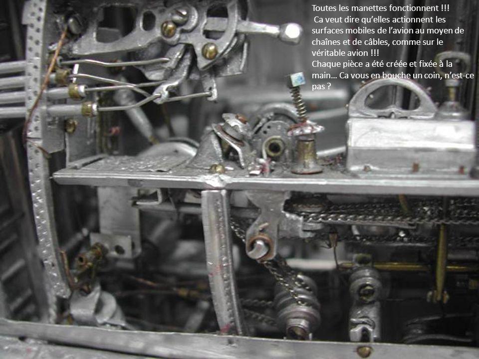Toutes les manettes fonctionnent !!! Ca veut dire quelles actionnent les surfaces mobiles de lavion au moyen de chaînes et de câbles, comme sur le vér