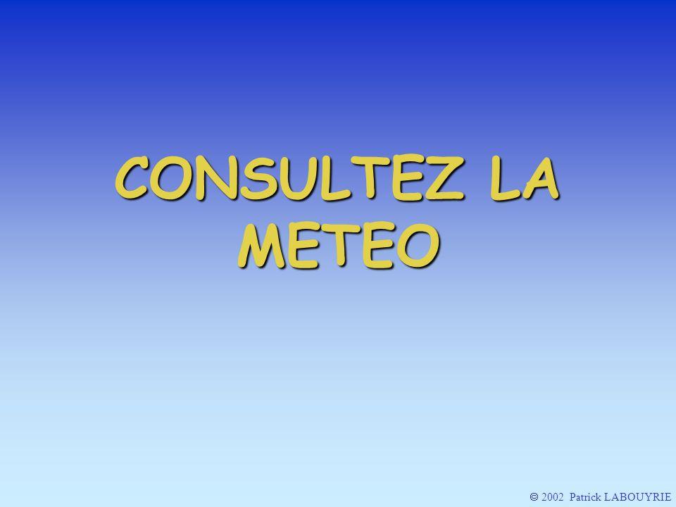 2002 Patrick LABOUYRIE CONSULTEZ LA METEO