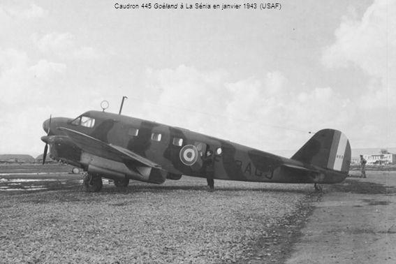Caudron 445 Goéland à La Sénia en janvier 1943 (USAF)