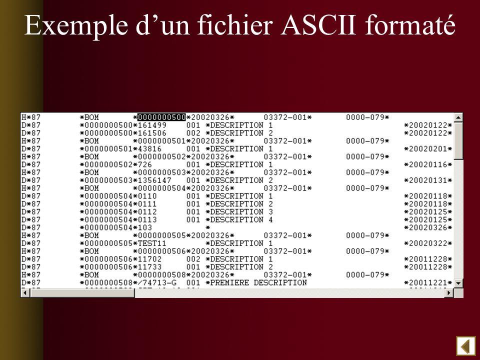 Exemple dun fichier ASCII formaté