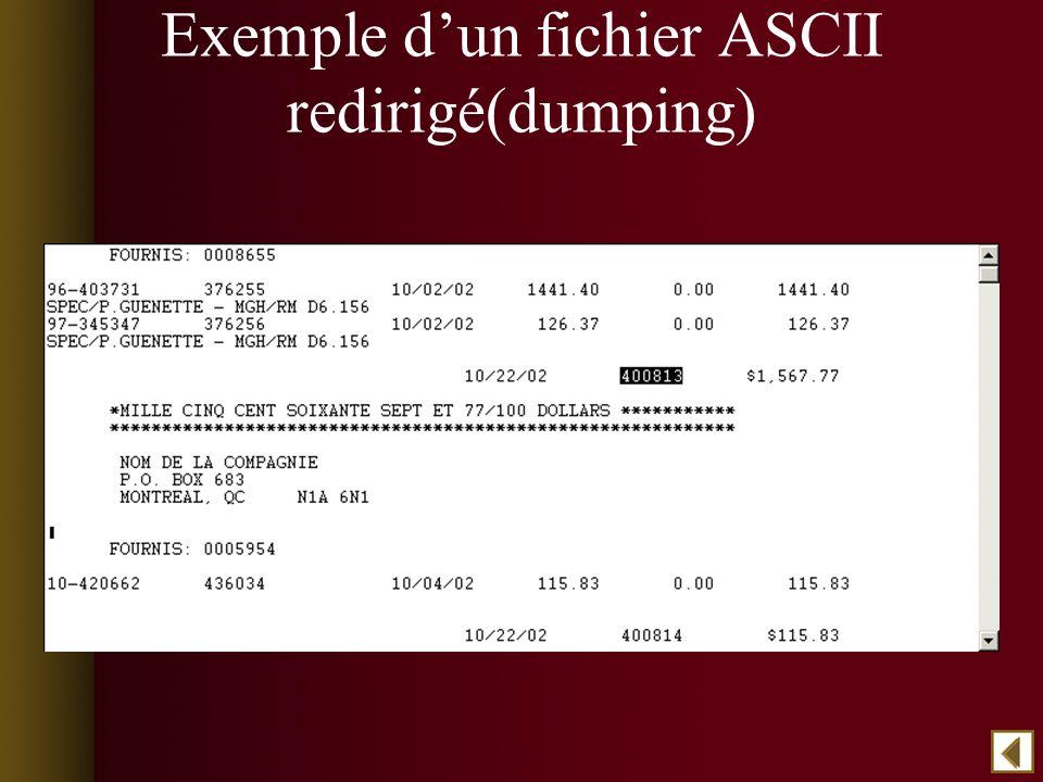 Exemple dun fichier ASCII redirigé(dumping)