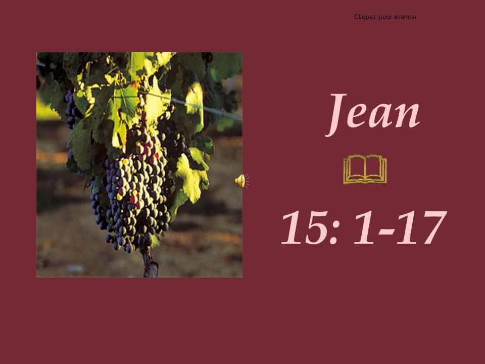 Jean 15: 1-17 Cliquez pour avancer