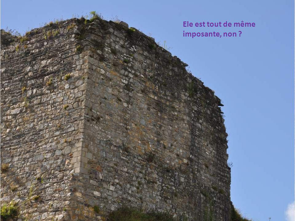 Le Chevalier de Fréminville, dans son Guide du voyageur dans le département du Finistère , écrit vers 1800, décrit ainsi le site de La Roche- Maurice : À une petite lieue nord-est de Landerneau, un roc escarpé au pied duquel passe la grande route de Paris, sont les ruines romantiques du châ- teau de La Roche-Maurice, (en breton Roc h Morvan), la plus ancienne forteresse qui existe dans le Finistère.