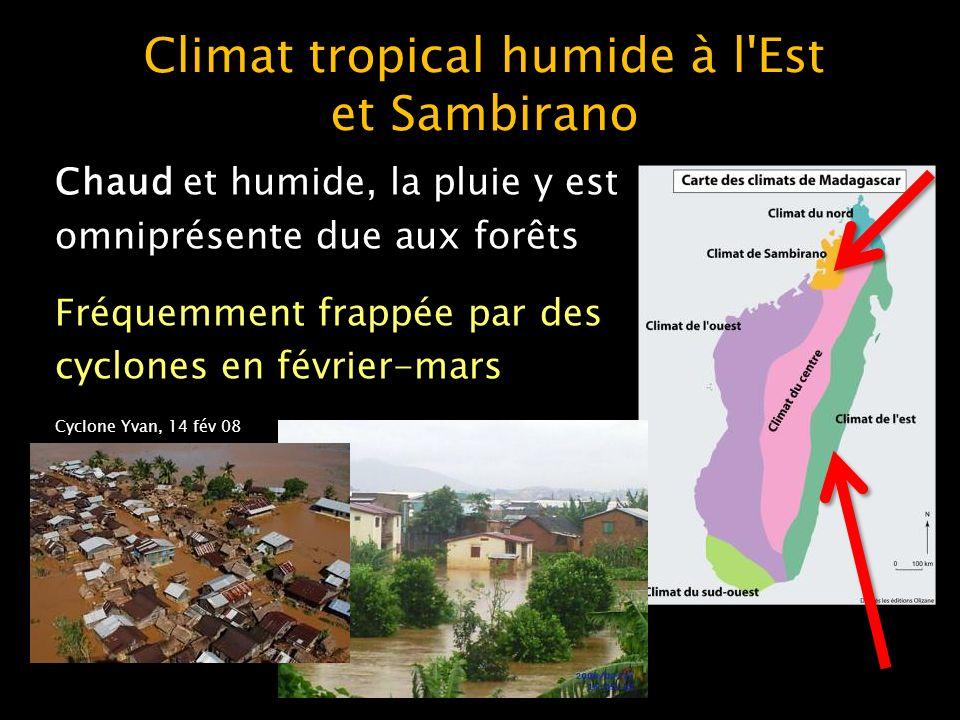 Climat tropical sec à l Ouest Les températures y sont plus élevées que dans l Est Tsingy de Bemaraha