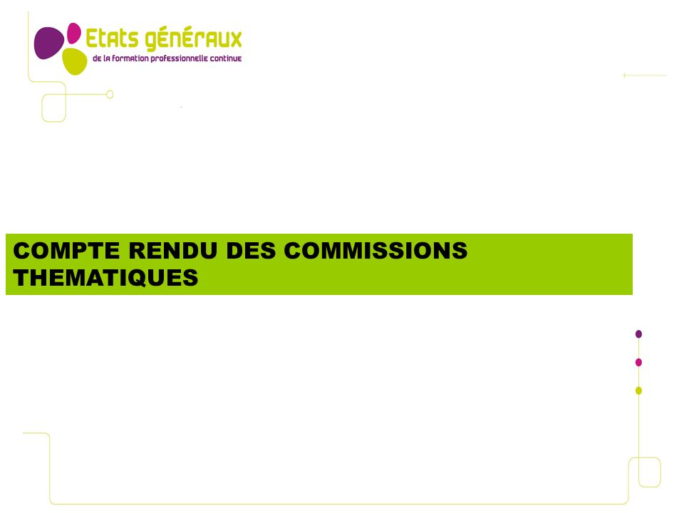 COMPTE RENDU DES COMMISSIONS THEMATIQUES