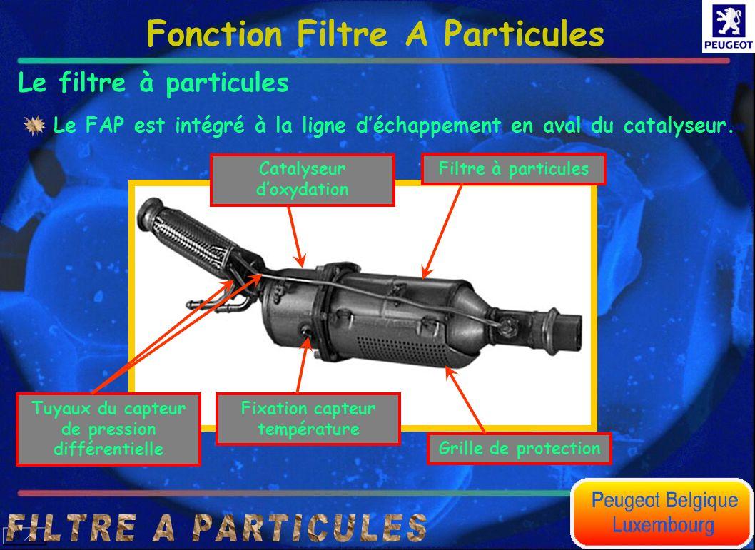 Fonction Filtre A Particules Le filtre à particules Le FAP est intégré à la ligne déchappement en aval du catalyseur. Fixation capteur température Gri